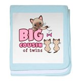 Big Cousin of Twins (Kitty) baby blanket