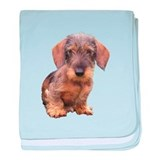 Wire Haired Red Dachshund baby blanket
