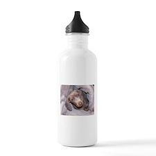 Puppy in Blanket Water Bottle