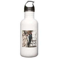 California Redheaded Woodpeak Water Bottle