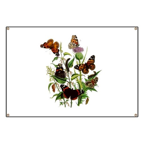 BUTTERFLIES & PURPLE THISTLE Banner