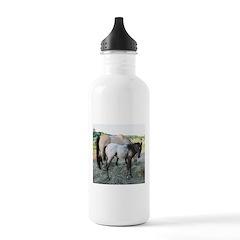 Appy foal Water Bottle