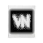 VN Logo Stadium Blanket
