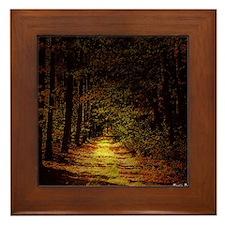 Show me the Way Framed Tile