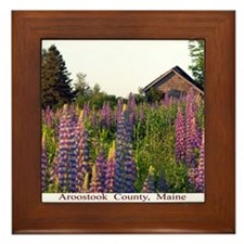 Reach road lupines Framed Tile