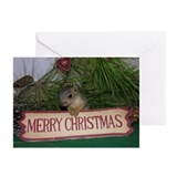 Merry Christmas Squirrel Cards (Pk of 10)