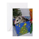 Opossum Present Christmas Cards (Pk of 20)