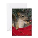 Christmas Card Squirrel in Sleigh
