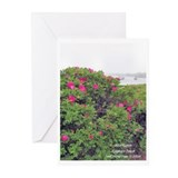 WILD ROSE Greeting Cards (Pk of 10)