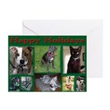 A Dog's Life Rescue Holiday C Greeting Cards (Pk o