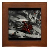 Gorgeous Red Dragonfly Framed Tile