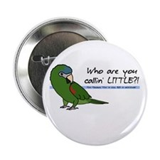 Hahn's Macaw Little Button