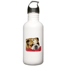 Bulldog 9W099D-003 Sports Water Bottle