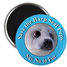 "Anti-Fur Harp Seal Pup 2.25"" Magnet (10 pack)"