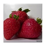 Strawberry Trio Tile Coaster