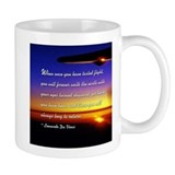 Cute Aviation quotes Mug
