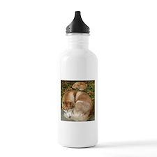 Siberian Husky & Pomeranian Water Bottle