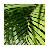 Paradise Palm - Tile Drink Coaster