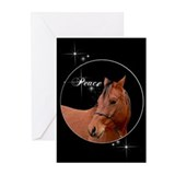 Arabian Xmas Nite Cards (Pk of 10)