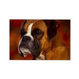 BOXER PROFILE Rectangle Magnet