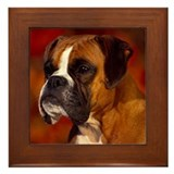BOXER PROFILE Framed Tile