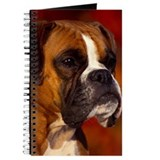 BOXER PROFILE Journal