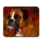 BOXER PROFILE Mousepad