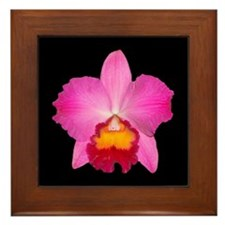 Purple Cattleya Framed Tile
