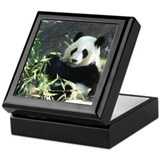 Keepsake Box-Panda