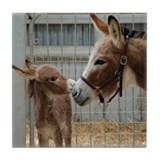 Donkey and Foal Tile Coaster