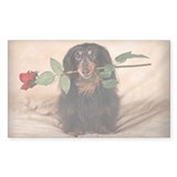 Hallie Dachshund Designs Decal