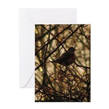 Cards and Gifts - Red Robin D Greeting Card