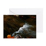 LITTLE FALLS Greeting Cards (Pk of 20)