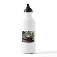 Big Orange Mushroom Water Bottle