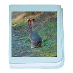 Black Tailed Jackrabbit baby blanket