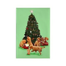 Christmas Toller Puppies Rectangle Magnet