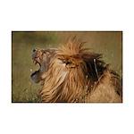 Lion Roar Mini Poster Print