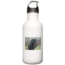Funny Mastino Water Bottle