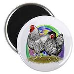 """Easter Egg Wyandottes 2.25"""" Magnet (100 pack)"""