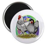 """Easter Egg Wyandottes 2.25"""" Magnet (10 pack)"""