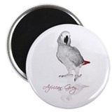 African Grey Parrot Magnet