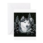 Alaskan Malamute Winter Desig Greeting Cards (Pk o