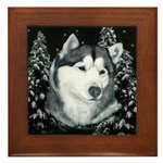 Alaskan Malamute Winter Desig Framed Tile