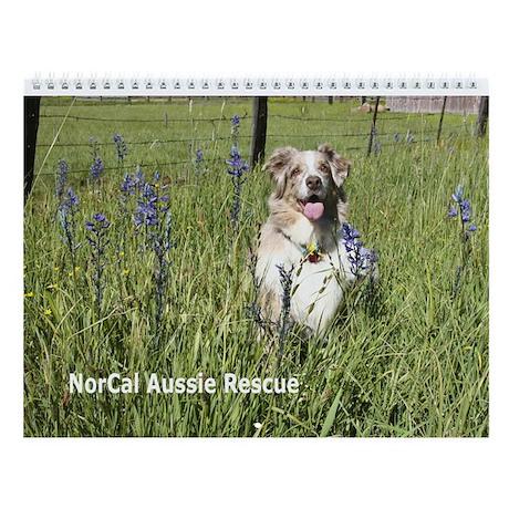 2013 Aussies We Love Wall Calendar