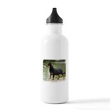 Lancashire Heeler 9R038D-013 Sports Water Bottle