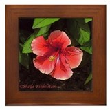 Red Orange Hibiscus - Framed Tile