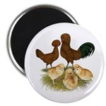 Red Polish Chickens Magnet