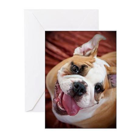 English Bulldog Puppy Greeting Cards (Pk of 10)