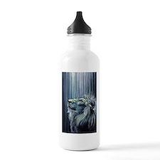 Illumination Water Bottle