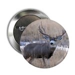 Muley Buck 2.25
